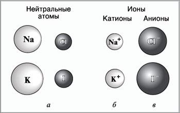 катионы и анионы картинки
