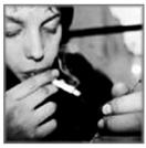 berkeley cigarettes online catalog