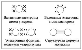 Схема образования углекислого газа