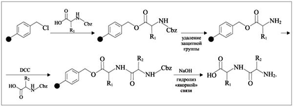Пептиды синтез пептидов увеличение пениса стероиды